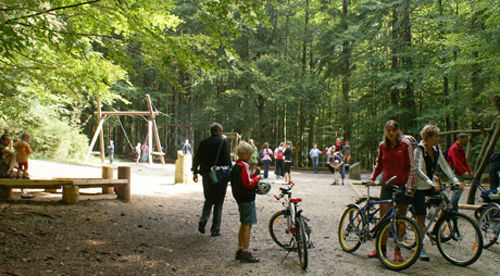 Forest Playground and Nature Discovery Trail